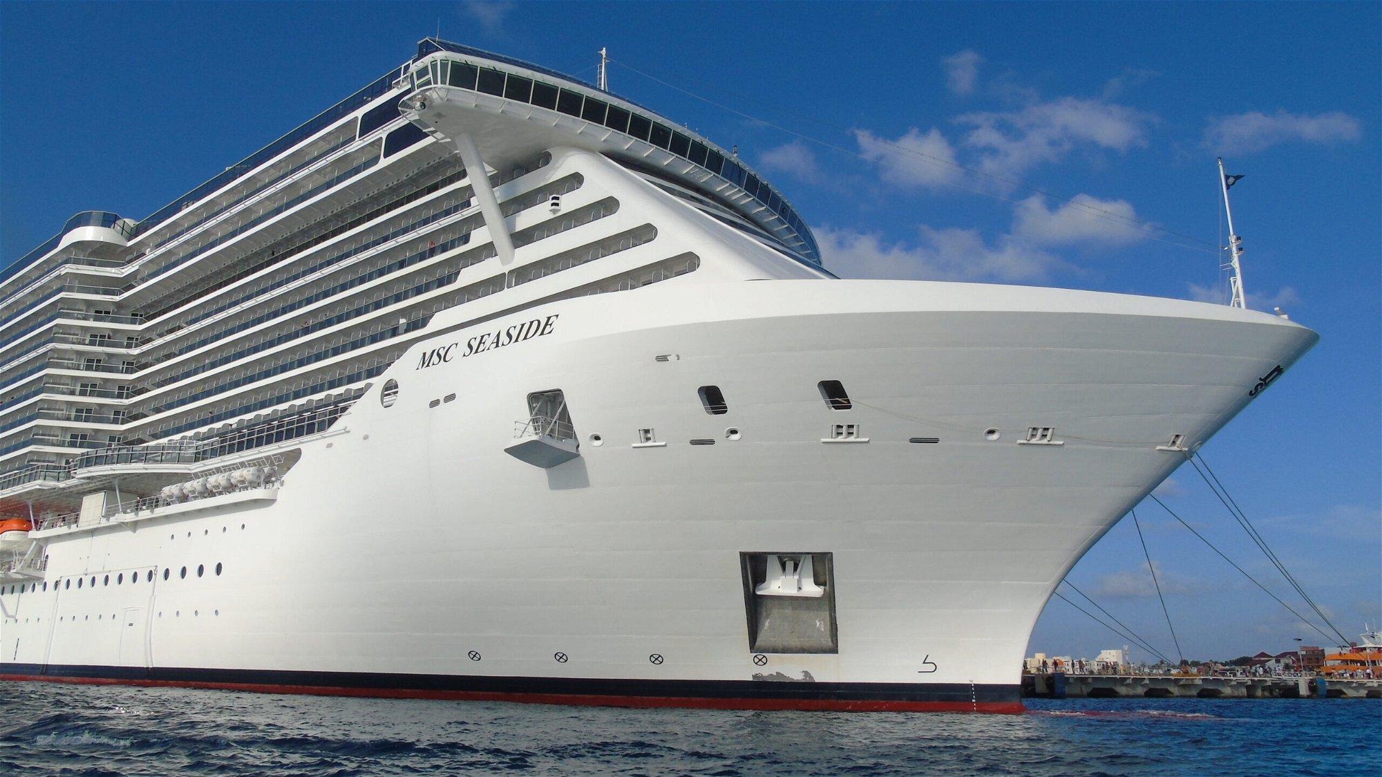 Secret Life of the Cruise 2